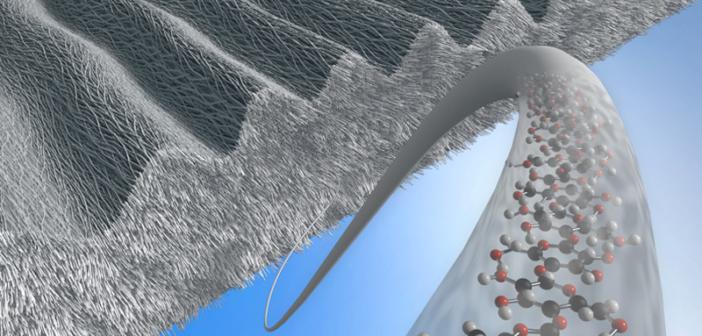 Cellulose Nanofibers Market